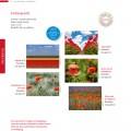 Grußkartenserie »Farbenpracht«, Set
