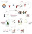 Weihnachtskartenset »Fröhliche Weihnachten«, Set